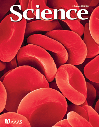 ScienceCover11Oct13